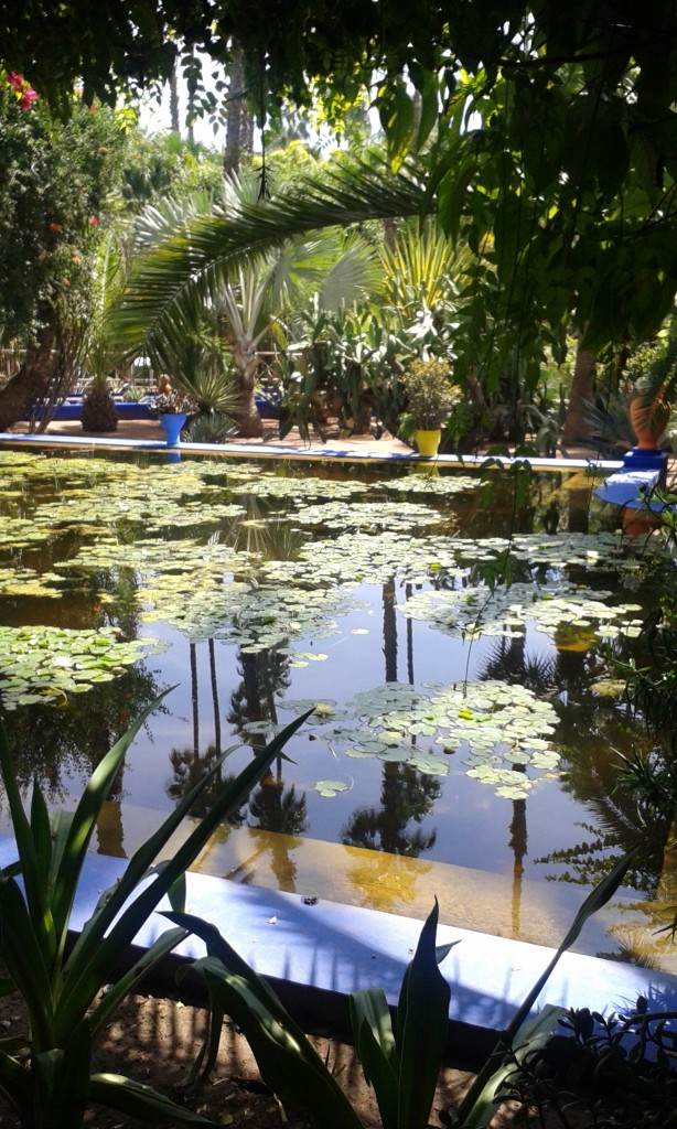 Jardin Majorelle in the summer